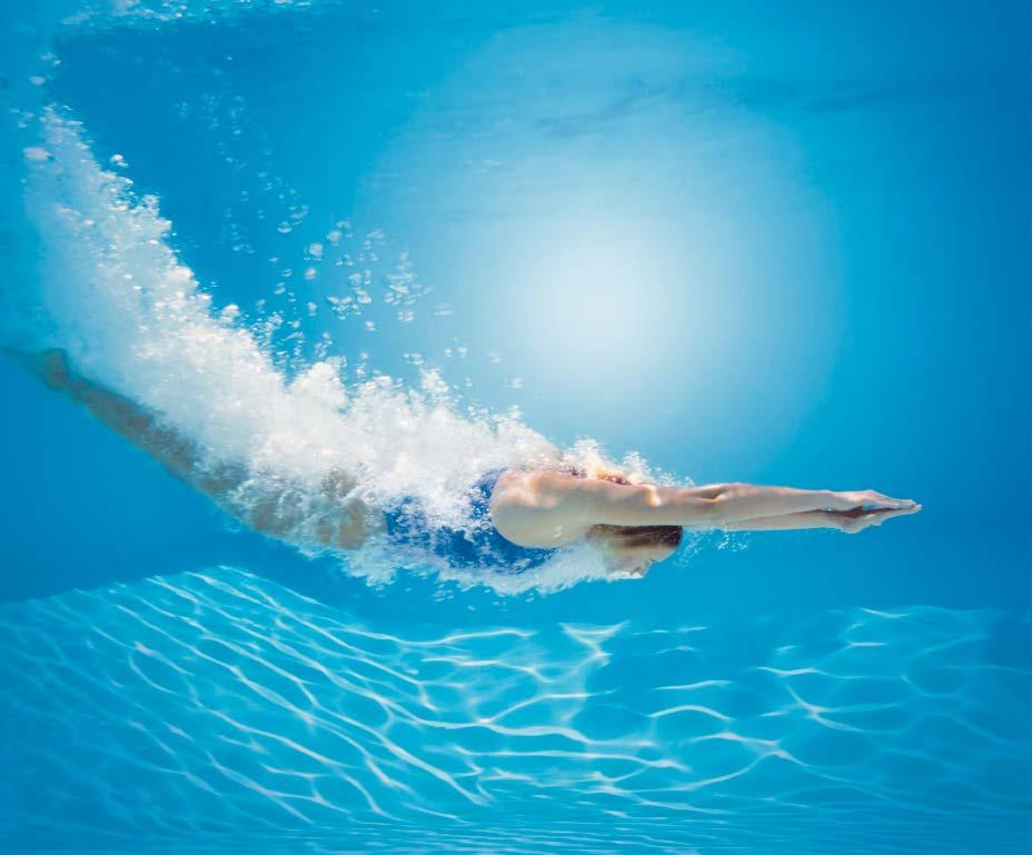 Cat logo zodiac 2017 for Mantenimiento piscinas pdf